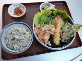 天妇罗盖饭,小沙丁鱼盖饭 (美空)